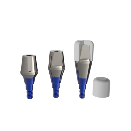 SOLID ABUTMENT